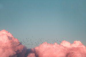 En himmel med rosa moln