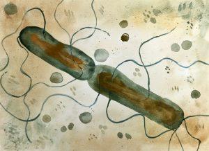 En illustration på en cell