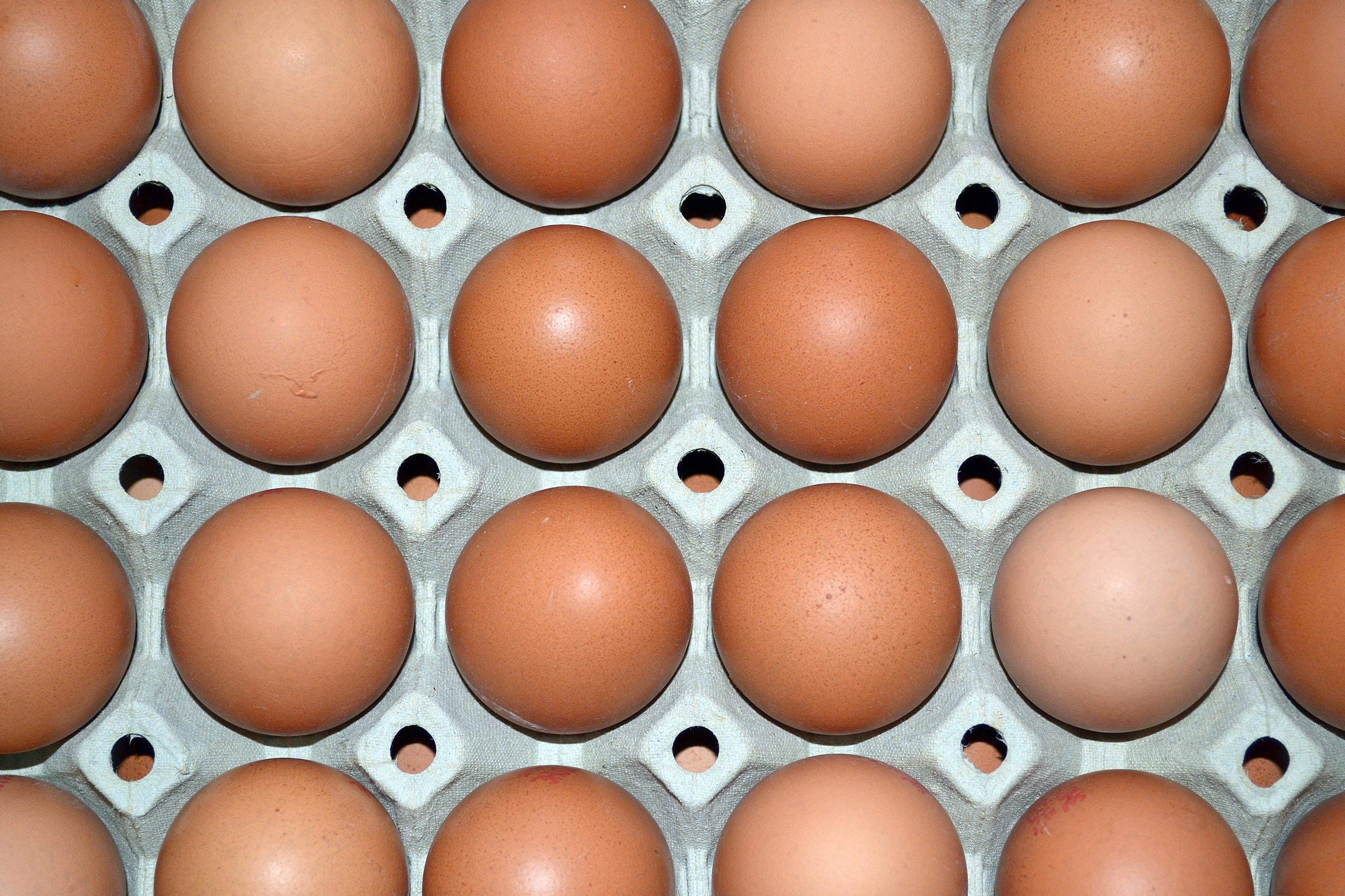 tål inte ägg
